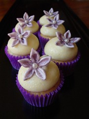 Mini Champagne Cupcakes (cupcaketastic) Tags: white flower cheese cupcakes engagement hummingbird purple chocolate champagne ivory creamed pearl