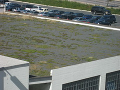 IMG_0978 (dawneday) Tags: maryland baltimore greenroof