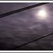 Dewey Moon.jpg