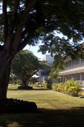 Sara's School