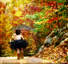 Parasol (mylaphotography) Tags: autumn fall texture umbrella toddler path walk parasol tutu mywinners mylaphotography rahijaber fairytalephotography