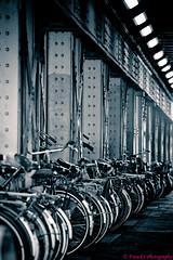 Under the Bridge (Frenck's Photography) Tags: bridge amsterdam bicycle screensaver steel bridges brug fietsen fiets underthebridge bruggen staal frenck onderdebrug