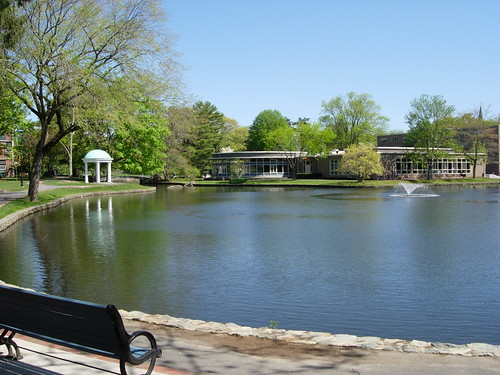 Wheaton College Pond