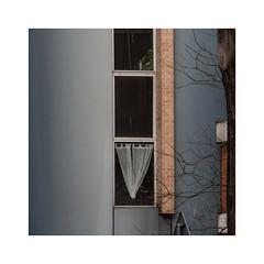 Quotidien (hélène chantemerle) Tags: arbres branche bâtiments extérieur façades fenêtre paysages photosderue rideaux urbain quotidien daily window curtains building street tree twigs blue orange white