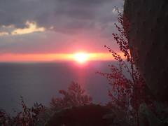 Sfocato (zio paperino) Tags: sunset sea nature geotagged tramonto mare vivid natura vaticano sole capo calabria sen tropea betterthangood ziopaperino mygearandme mygearandmepremium mygearandmesilver mygearandmegold