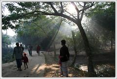 Waiting Ahead [..Chuadanga, Bangladesh..] (Catch the dream) Tags: life road street morning people sun rural dawn village streak walk bongo beam beginning journey sunburst rays bengal bangladesh bangla bengali bangladeshi bangali chuadanga catchthedream gettyimagesbangladeshq2