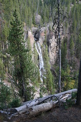 Crystal Falls (Canyon Village, Wyoming, United States) Photo