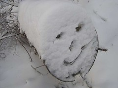 Put on a happy (snow) face . . .
