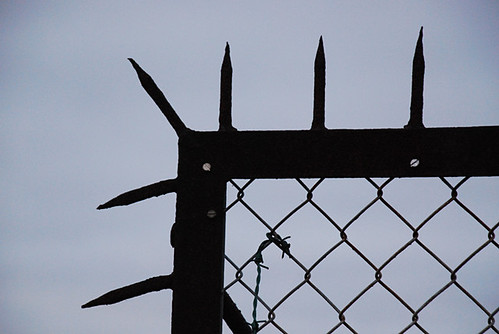 eminem deer on fence. Eminem Deer On Fence. fence Tralian securitybuy metal spiked fences have
