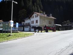 DSC02768 (Chinmong) Tags: austria badgastein
