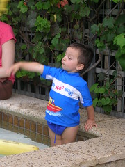 Motion (mikecogh) Tags: motion swimmingpool grandson luc bathers luc08