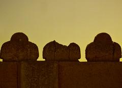 وراس مالي.. ذكرياتي.. وحلم وآمال وطموح (| Rashid AlKuwari | Qatar) Tags: old wall arabic arabian arabi doha qatar rashid راشد قطر قديم قديمة دوحة smaisma حائط الكواري alkuwari سميسمة طوفة lkuwari متشلخة