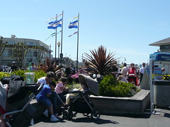 Flags at Pier 39 Photo