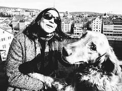 wasn't me (matthias hämmerly) Tags: dog street streetphotography zuerich zürich swiss switzerland grain contrast black white bw monochrom ricoh grd 2 woman hind frau sun winter cold city urban