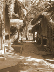 Visiting the Mangyan people , a street in the Mangyan village (STEHOUWER AND RECIO) Tags: philippines mindoro village mangyan people culture native sepia monochrome child bata street houses bamboo reed tropical scenery perspective pilipinas travel holiday vacation southeastasia asia island philippine