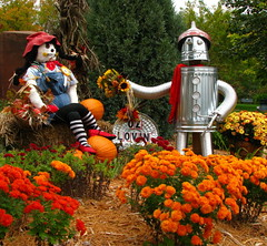 OZ LOVIN' IT! (Sandra Leidholdt) Tags: autumn usa color fall wisconsin america automne dorothy us midwest unitedstates display oz scarecrow explore american wizardofoz autunno autumnal tinman bayfield ornamentation amricain midwestern autunnale lawndecorations explored sandraleidholdt leidholdt sandyleidholdt
