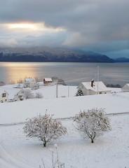 Nysn (dese) Tags: schnee winter snow norway landscape countryside norge vinter paisaje neve noruega firstsnow scandinavia landschaft zima tuft kar sn sne landskap sneg norvge fusa dese novembar strandvik bjrnefjorden westernnorway nysn norveka desefoto