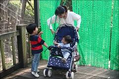 2007國旅卡DAY4(壽山動物園)021