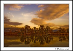 ..last autumn impressions take II.. (G.Hotz Photography (busy as a bee =)) Tags: autumn sky lake reflection fall leaves austria herbst impressions soe constance 2007 aplusphoto superaplusphoto betterthangood ondarena