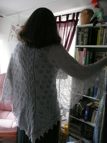Wing of the Swan Shawl