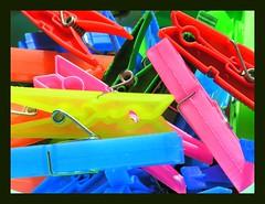 colors of last summer (zipponio) Tags: vivid pegs mollette passionphotography golddragon chiappini colorphotoaward colourartaward artlegacy