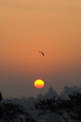 Sunrise in Lalbagh
