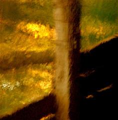 "Spirit…!!! :))) (Denis Collette...!!!) Tags: horses canada reflection quebec spirit reflet chevaux paddock portneuf firstquality abigfave outstandingshot artlibre pontrouge thatsclassy ""deniscollette"" «wildriver» «rivièresauvage» world100f «hereiam» «brianadams»"