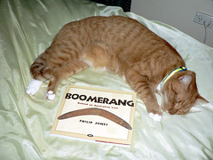 Boomerang Olly