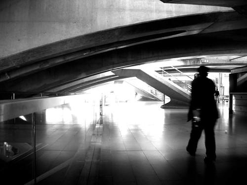 DSCN7068© fatima ribeiro2008