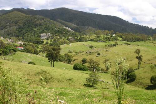 Mt. Dromedary, NSW.