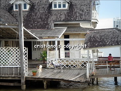 House nearby the river - Bangkok, Thailand (cristiano1973) Tags: boys thailand temple market bangkok buddha monk tuktuk nightlife watarun thaifood chaophrayariver patpong recliningbuddha templeofdawn samutprakan krungthep thecityofangels watphot