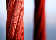 twizzlers? (juj ~) Tags: red bokeh cables twizzlers