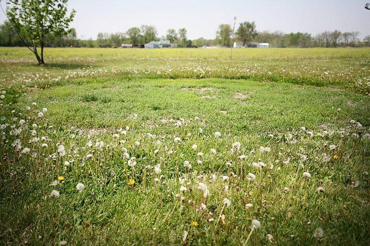 05-13-cropcircle