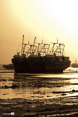 Old Boats (Shahbaz Hussain's Photography) Tags: old city light sea sky brown white black color reflection art love water colors night dark lens boats lights photo nice nikon focus with view image royal arab falcon shutter inside kuwait q8 hussain alkoot shahbaz d5000 flickraward ringexcellence