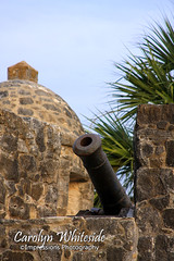 Presidio Cannon