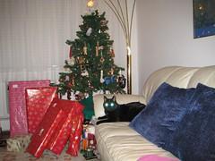 IMG_0020 (fadingembers) Tags: christmas animals kitties christmas2007