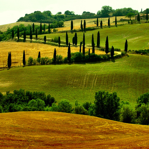 Tuscany paths