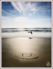 Smile (i ea sars) Tags: ocean california summer usa naturaleza seascape west bird beach nature water smile america landscape happy freedom fly sand scenery unitedstates pacific seagull natur happiness pacificocean fv10 canon5d priroda huntingtonbeach soe canonef2470mmf28lusm 2470l ef2470mmf28lusm 2470mm  proda canoneos5d abigfave shieldofexcellence lifebeautiful diamondclassphotographer flickrdiamond platinumheartaward