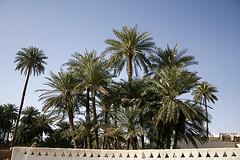 Ghademes (Azaga ツ) Tags: light color desert libya sebha ibrahem غدامس ghademes azaga