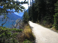curriculum ... (Robertson the Bruce) Tags: road canada alberta rockymountains lakelouise continentaldivide pathways