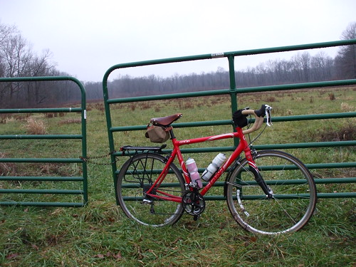 Bike in field I