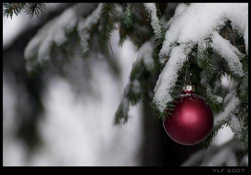 Winter Wonderland by VickerMonkee.