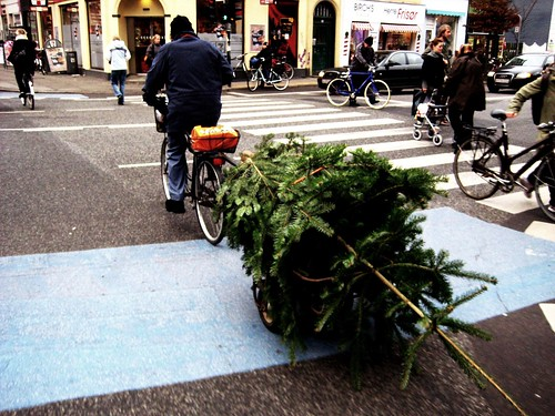 Bike with Christmas tree