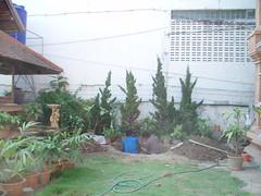 P1180335