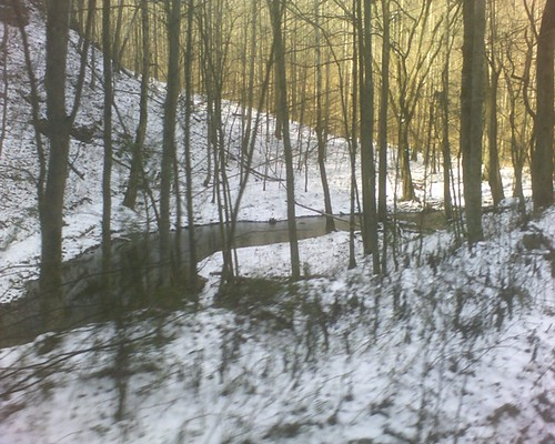 snow by the creek