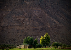Houses, trees and mountain, Libya (Eric Lafforgue) Tags: africa house landscape explore libya tress libia libye libyen ghadafi fezzan  lbia lafforgue libi libiya  ribia liviya khadafi libija  a14118      lbija  lby  libja lbya liiba livi