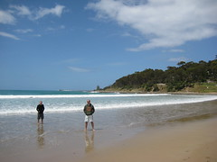 GreatOceanRoadtrip_ (10) (neiloneiloneil) Tags: australia greatoceanroad lorne