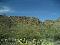 (skaty222) Tags: arizona tucson saguaronationalpark