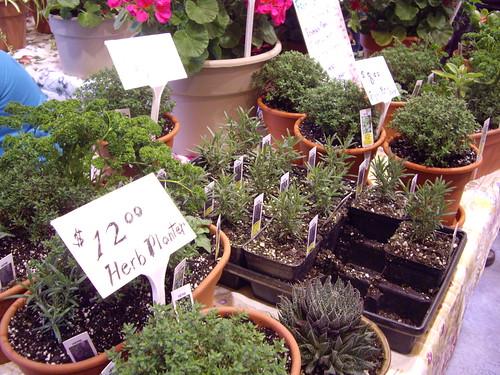 032208_herbs