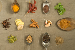 spices (mwhammer) Tags: india color texture leaves design ginger pattern cinnamon rustic chiles powder seeds earthy garlic sublime cumin cilantro arrangement tumeric cloves cardamom wholefoodsmarket flavorful corriander mustardseeds foodstyling melinahammer